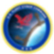 US fleet.jpg