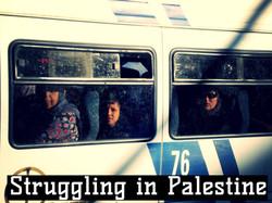 Struggling in Palestine