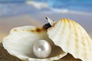 Trouver la perle rare