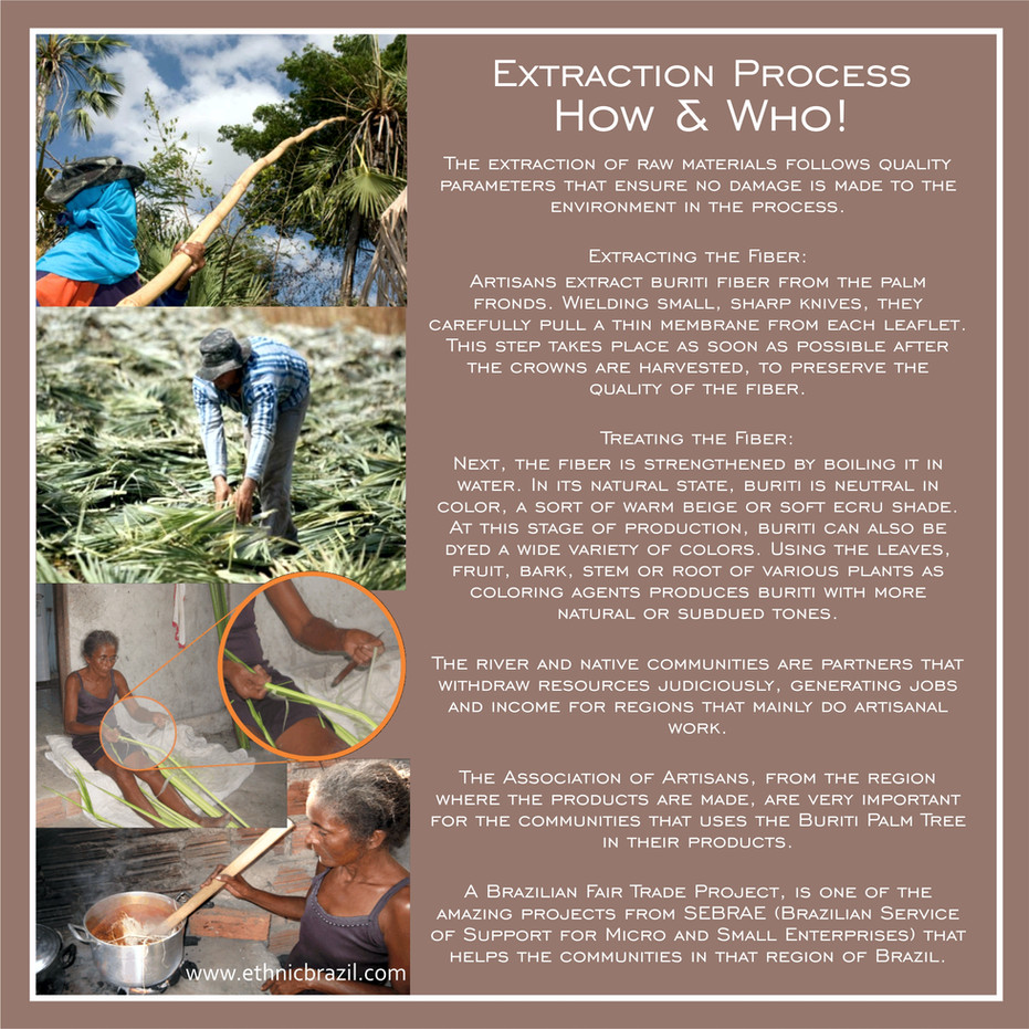 How & Who: The Extraction Process