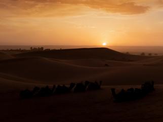 Coucher de soleil sur les dunes de Merzouga