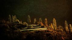 paysage-DSC5740.jpg