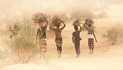 Sénégal -1.jpg