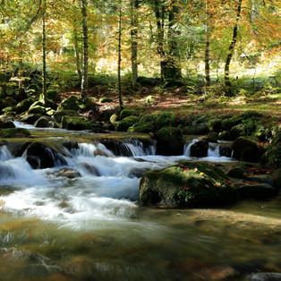 Payolle ( Pyrénées )