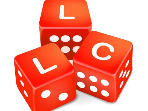 Is Multi-member LLC an Option for ME?