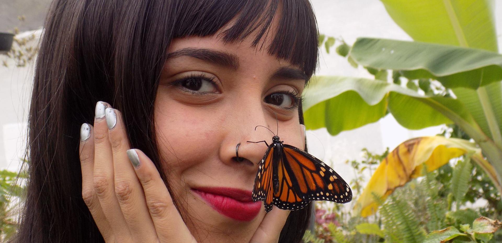 Monitoreo de Mariposa Monarca
