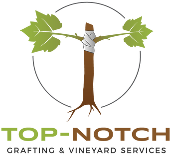 Top-Notch 2018-Vertical..png