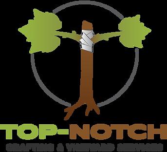 Top-Notch 2018-Vertical..png