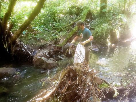 Parque Terra Mágica Florybal faz mutirão de limpeza em arroio