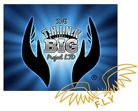 Think big - Fly logo.png