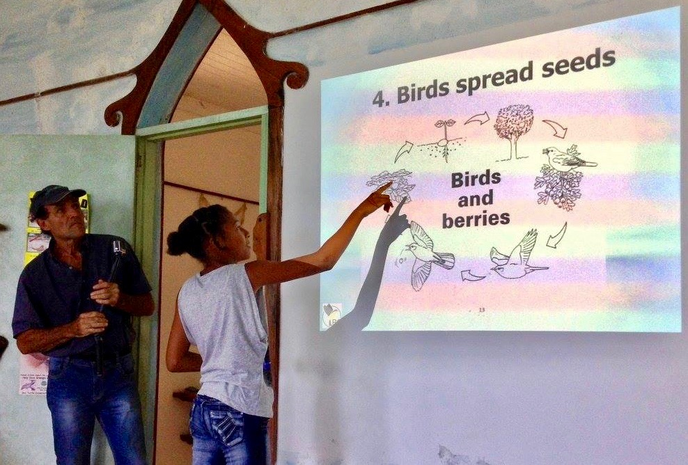 Bird Conservation at KIDO - Learning abo