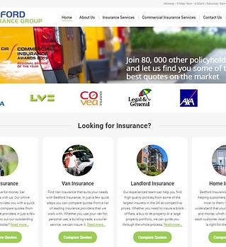 Website example 5