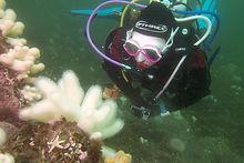 Cerys Sprent | Bespoke Scuba Diving | Dagenham | Essex