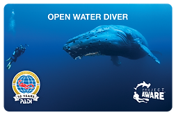 Project AWARE Certification Card - Bespoke Scuba Diving, Becontree Heath, Dagenham Essex