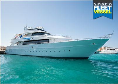 Bespoke Scuba Diving - Dagenham Essex - Red Sea Trip With Blue O Two