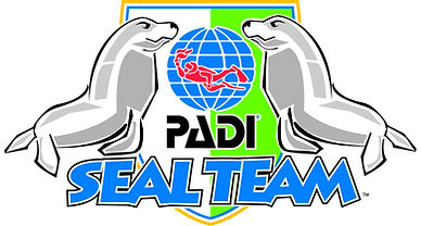 PADI Seal Team, Becontree Heath Leisure Centre, Dagenham, Essex