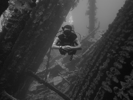 Time to Liveaboard dive?