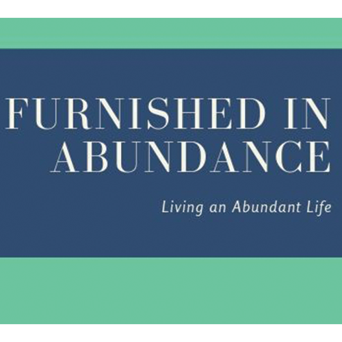Furnished in Abundance