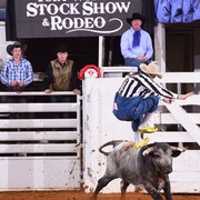 Fort Worth Stock Show & Rodeo - 2019