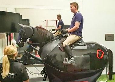 mechanical horse.jpg