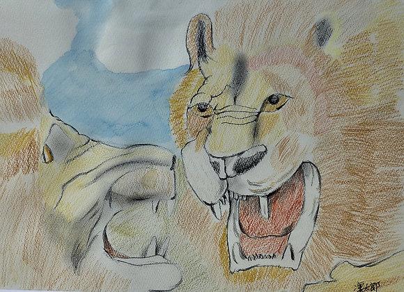 『ライオン』今岡凜太郎:作