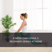8 WEEK CHALLENGE 3:  BEGINNER SERIES AT HOME This plan is for beginners only. It caters for newbies training at home, who are starting their fitness/weight loss journey. This program contains body weight exercises with no equipment necessary.  This package includes: 2 phase exercise program which consists of 4 days of exercise and three rest days. Diet plan  8 Week smartphone app subscription Videos attached to all exercises Workout descriptions  Workout tracking  Body stat updates  R599,00 for the complete 8 week challenge, without a diet plan.   R699,00 for the complete 8 week challenge, with a diet plan.  It is advised that you complete the program with the correct nutritional protocols, however if you have previously done a challenge and wish to redo it, you may purchase the option without a diet. If you feel that you are competent with dieting you may also choose the option without a diet.