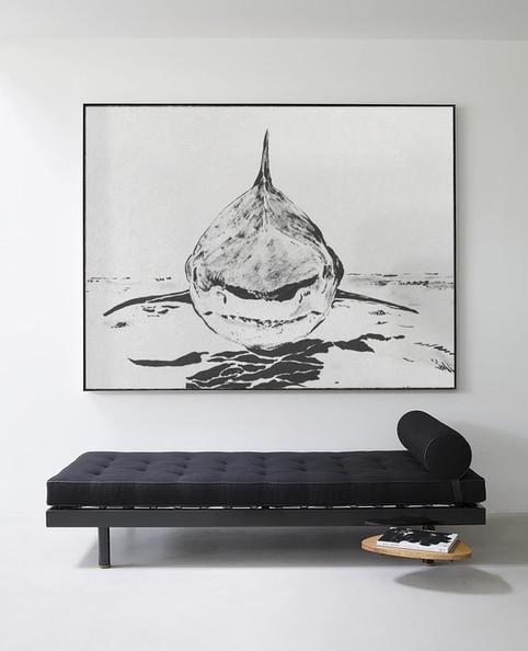 B U L L Shark