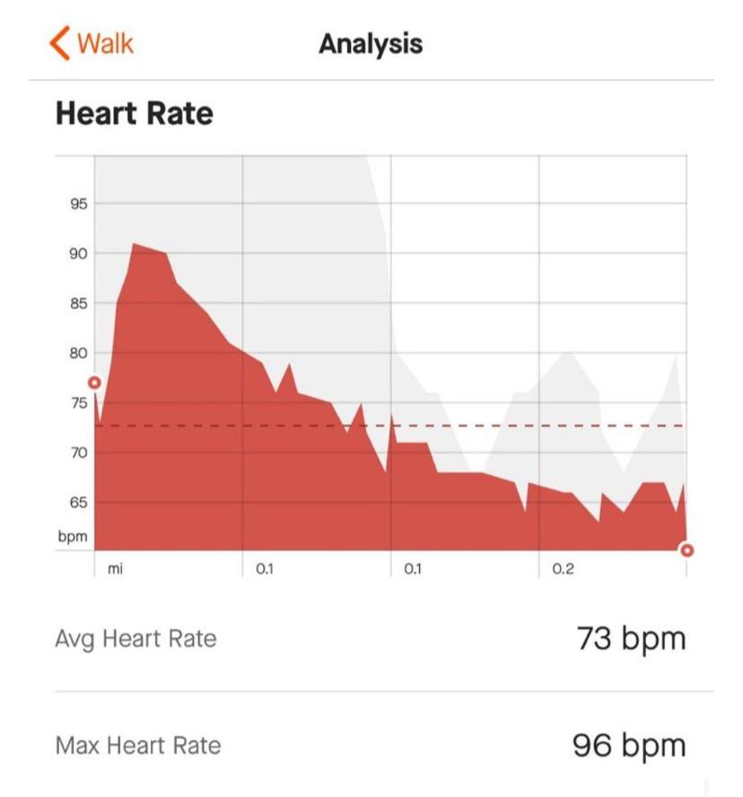 Average heart rate 73 BPM, Maximum 96 BPM