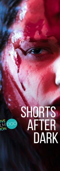 Short After Dark poster