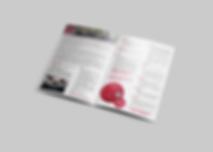 polyspeed_booklet_mock3.png