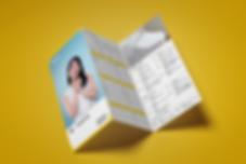 Inax_leaflet_mock1.png