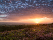 Woodbury Common Sunset