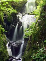 Dartmoor Fall