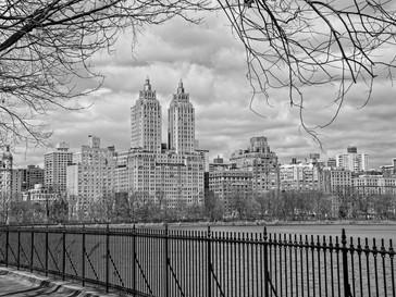 Central Park Railings