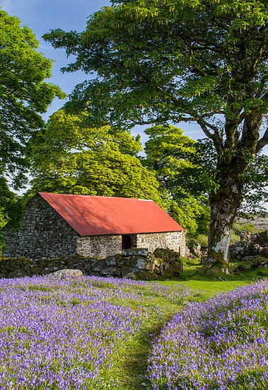 DARTS FARM PHOTOGRAPHY COURSE