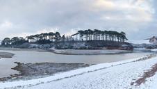 Ottermouth Snow