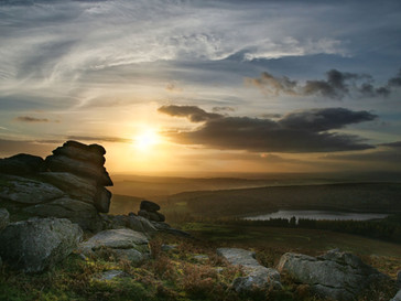 Essence of Dartmoor