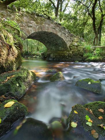 Hisley Bridge Rush