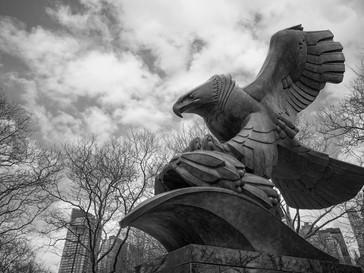 Eagle in Battery Park