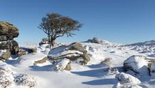 Howell Tor Snow