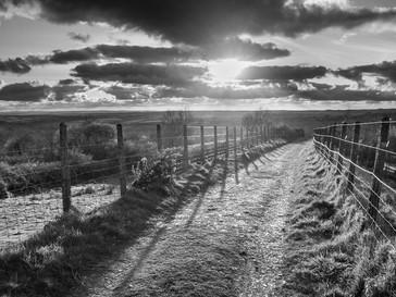Lane at Sunset