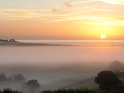 Otter Valley Mist