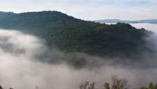 Teign Valley Mist