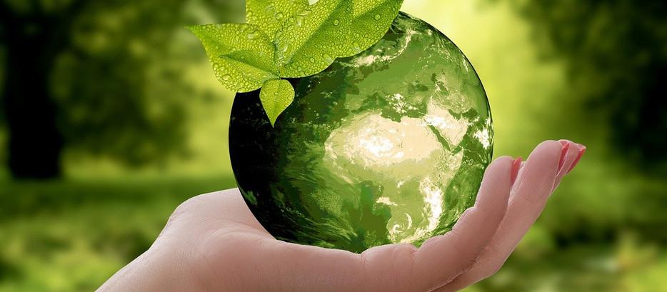 ZCO2 o primeiro DEFI verde da geração Z