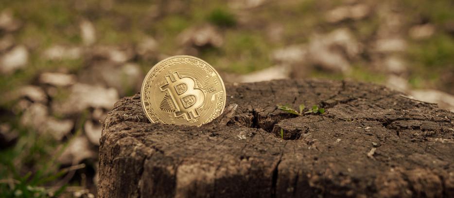 """Pool de mineração sustentável lançado na Inglaterra busca o """"bitcoin verde"""""""