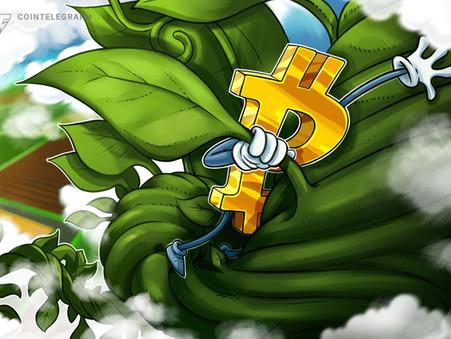 Máxima em torno de US$390mil - gráfico mostra que nova corrida altista de Bitcoin está aquecendo