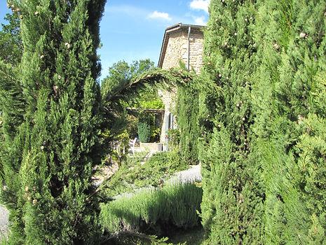 Gîte Les Buissières : La terrasse depuis les cyprès