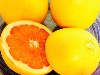グレープフルーツの会