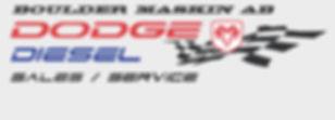 Logotyp Hemsida Ramdiesel.jpg