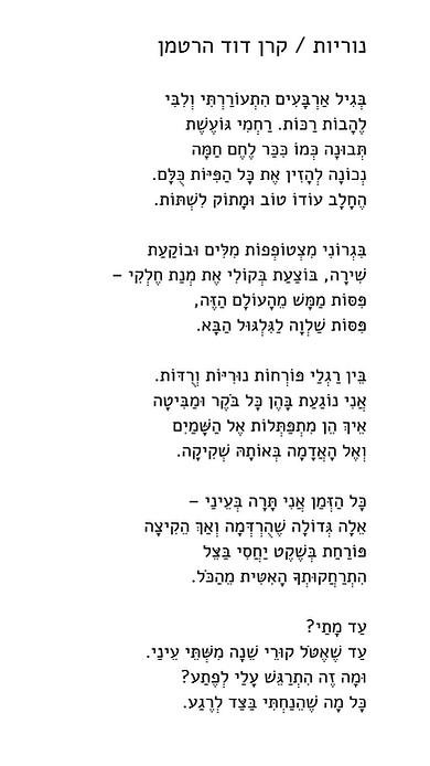 נוריות2 (4).png